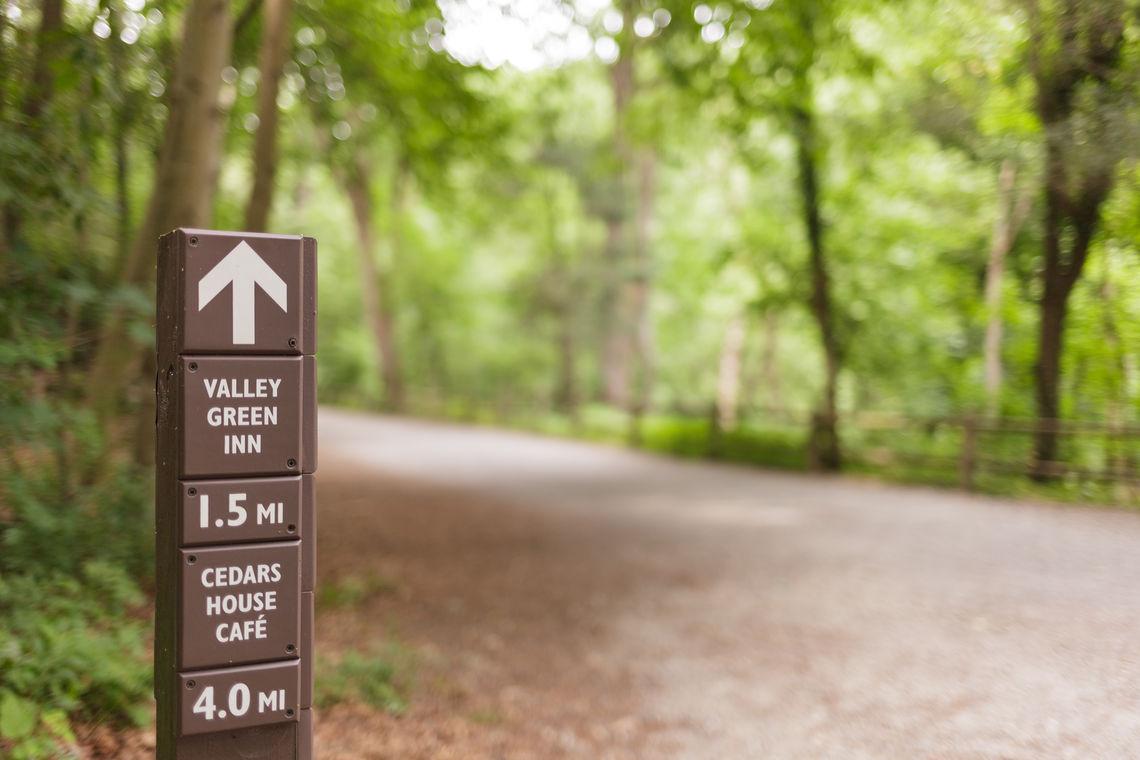 Photo: Wissahickon Valley Park