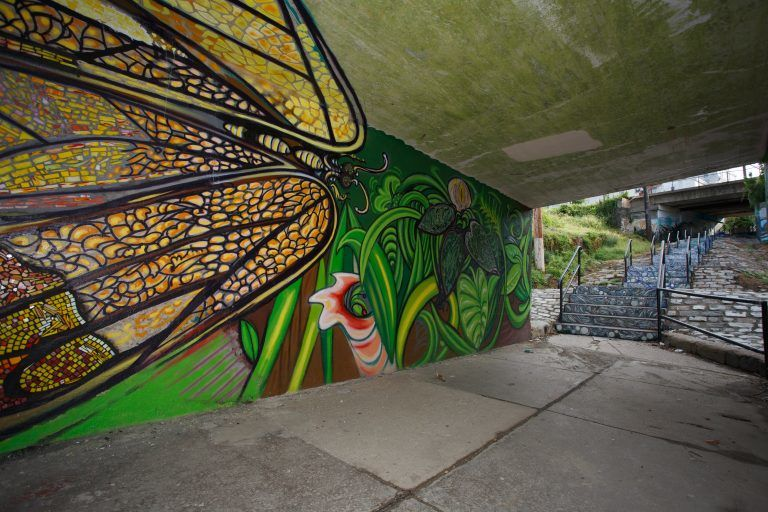 Photo: Fountain Street steps mural by Paul Santoleri