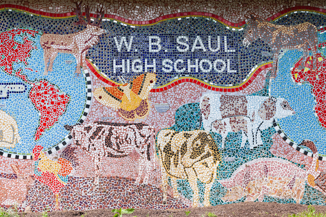 Photo: W.B. Saul Agricultural High School in Roxborough announces plans to build a new $1 million livestock center