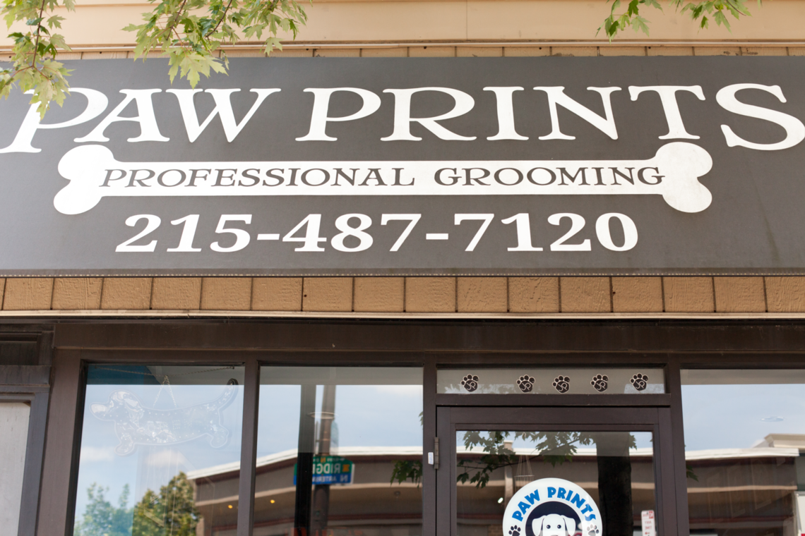 Photo: Paw Prints Professional Grooming
