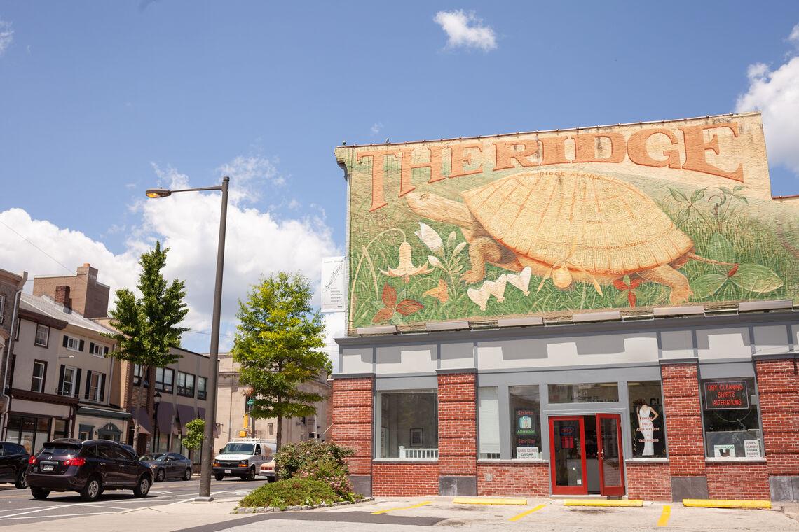 Photo: Ridge Avenue World On a Turtle Mural